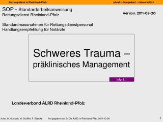 Schweres Trauma –  präklinisches Management