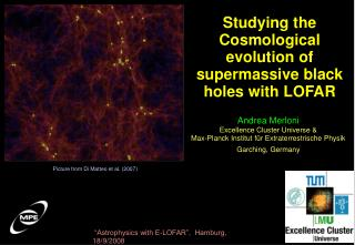 Studying the Cosmological evolution of supermassive black holes with LOFAR