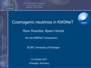 Rezo Shanidze, Bjoern Herold                (for the KM3NeT consortium)