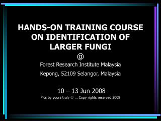 10 – 13 Jun 2008 Pics by yours truly   … Copy rights reserved 2008
