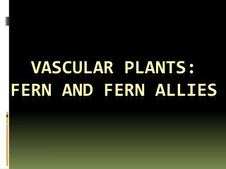 Vascular plants: FERN and FERN ALLIES