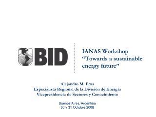 "IANAS Workshop  ""Towards a sustainable energy future"""
