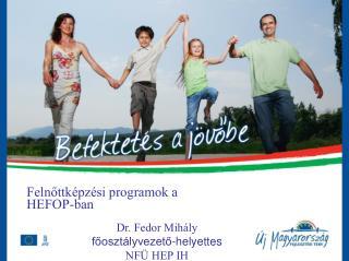 Felnőttképzési programok a HEFOP-ban