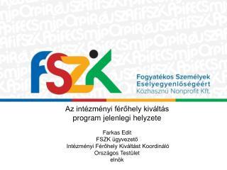 Az intézményi férőhely kiváltás program jelenlegi helyzete Farkas Edit  FSZK ügyvezető