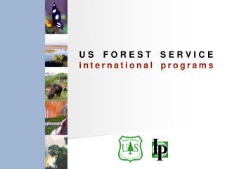 US FOREST SERVICE international programs