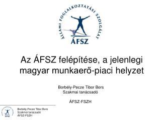 Az ÁFSZ felépítése, a jelenlegi magyar munkaerő-piaci helyzet