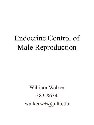 Endocrine Control of Male Reproduction