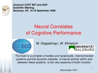 Neural Correlates  of Cognitive Performance