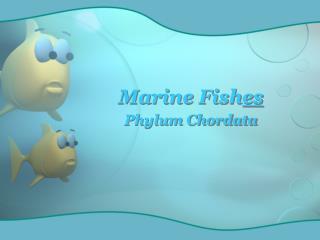 Marine Fish es
