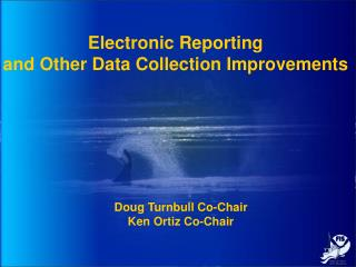 Electronic Reporting  and Other Data Collection Improvements