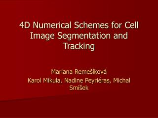 4D Numerical Schemes for Cell Image Segmentation and Tracking