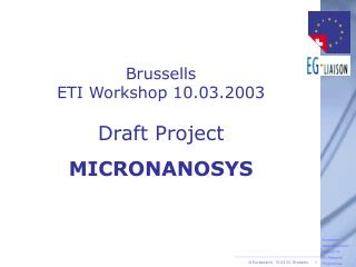 Brussells ETI Workshop 10.03.2003 Draft Project MICRONANOSYS