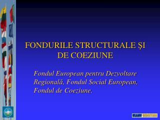 FONDURILE  STRUCTURALE  ŞI DE COEZIUNE