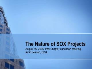 The Nature of SOX Projects
