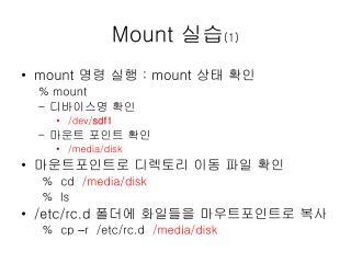 Mount  실습 (1)