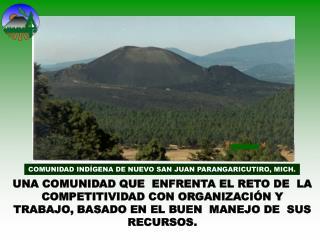 COMUNIDAD IND�GENA DE NUEVO SAN JUAN PARANGARICUTIRO, MICH.