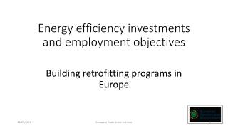 Energy efficiency investments and employment objectives