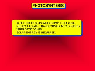 "IS THE PROCESS IN WHICH SIMPLE ORGANIC MOLECULES ARE TRANSFORMED INTO COMPLEX ""ENERGETIC"" ONES."