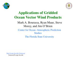 Applications of Gridded  Ocean Vector Wind Products