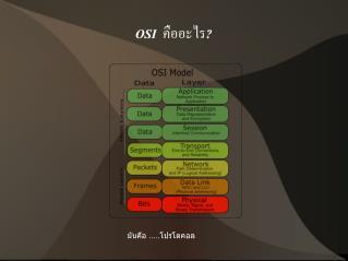 OSI   คืออะไร ?