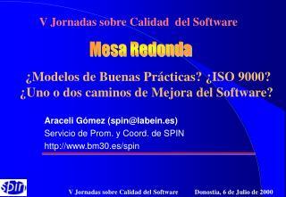 Araceli Gómez (spin@labein.es) Servicio de Prom. y Coord. de SPIN bm30.es/spin