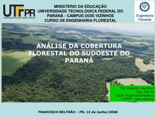 AN�LISE DA COBERTURA FLORESTAL DO SUDOESTE DO PARAN�