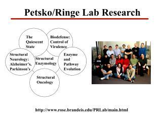 Petsko/Ringe Lab Research