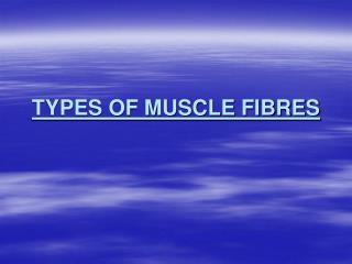 TYPES OF MUSCLE FIBRES