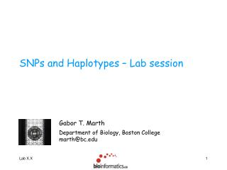 SNPs and Haplotypes – Lab session