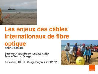 Les enjeux des câbles internationaux de fibre optique