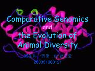 Comparative Genomics and the Evolution of  Animal Diversity