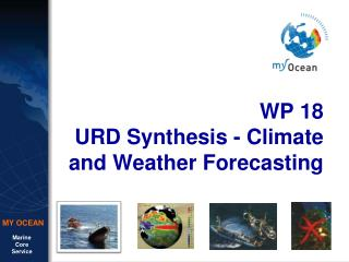 WP 18 URD Synthesis - Climate and Weather Forecasting