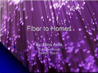 Fiber to Homes
