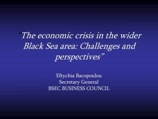 BSEC BUSINESS COUNCIL