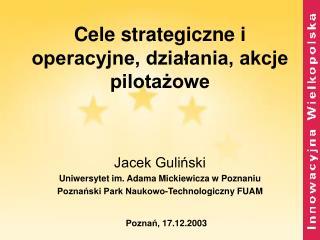 Cele strategiczne i operacyjne, działania, akcje pilotażowe
