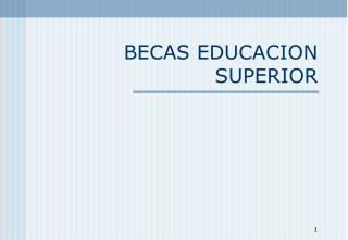 BECAS EDUCACION SUPERIOR