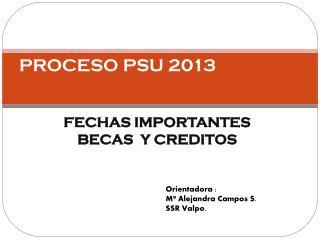 PROCESO PSU 2013