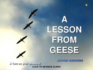 A LESSON FROM GEESE