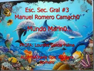 Esc. Sec. Gral #3  Manuel Romero Camach0