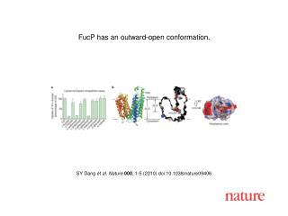 SY Dang  et al .  Nature 000 ,  1 - 5  (2010) doi:10.1038/nature0 9406