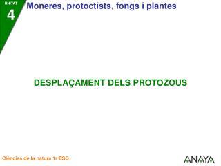 Els protozous utilitzen diferents mecanismes per a despla�ar-se: