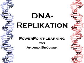 DNA-  Replikation