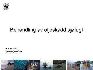 Behandling av oljeskadd sjøfugl