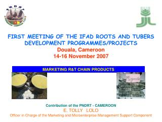 Contribution of the PNDRT - CAMEROON E. TOLLY   LOLO