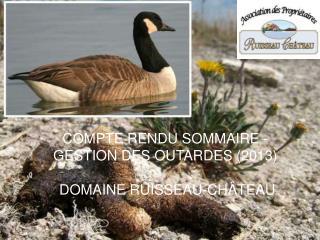 COMPTE RENDU SOMMAIRE -  GESTION DES OUTARDES (2013)   DOMAINE RUISSEAU-CHÂTEAU