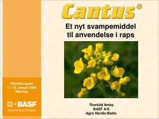 Et nyt svampemiddel  til anvendelse i raps