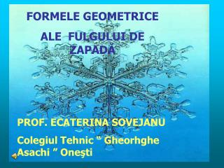FORMELE GEOMETRICE ALE  FULGULUI DE ZAPAD ? PROF. ECATERINA SOVEJANU