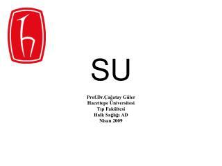 Prof.Dr. agatay G ler Hacettepe  niversitesi Tip Fak ltesi Halk Sagligi AD Nisan 2009