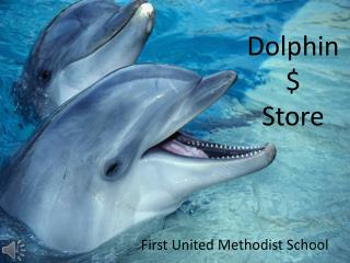 Dolphin $  Store