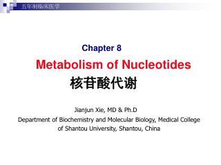 核苷酸代谢